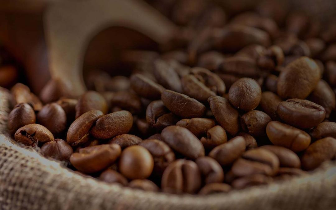 أهم النصائح لاختيار أفضل قهوة