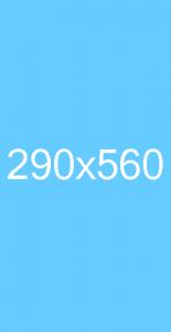 290x560